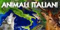 Animali italiani